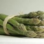 NovacertAsparagus